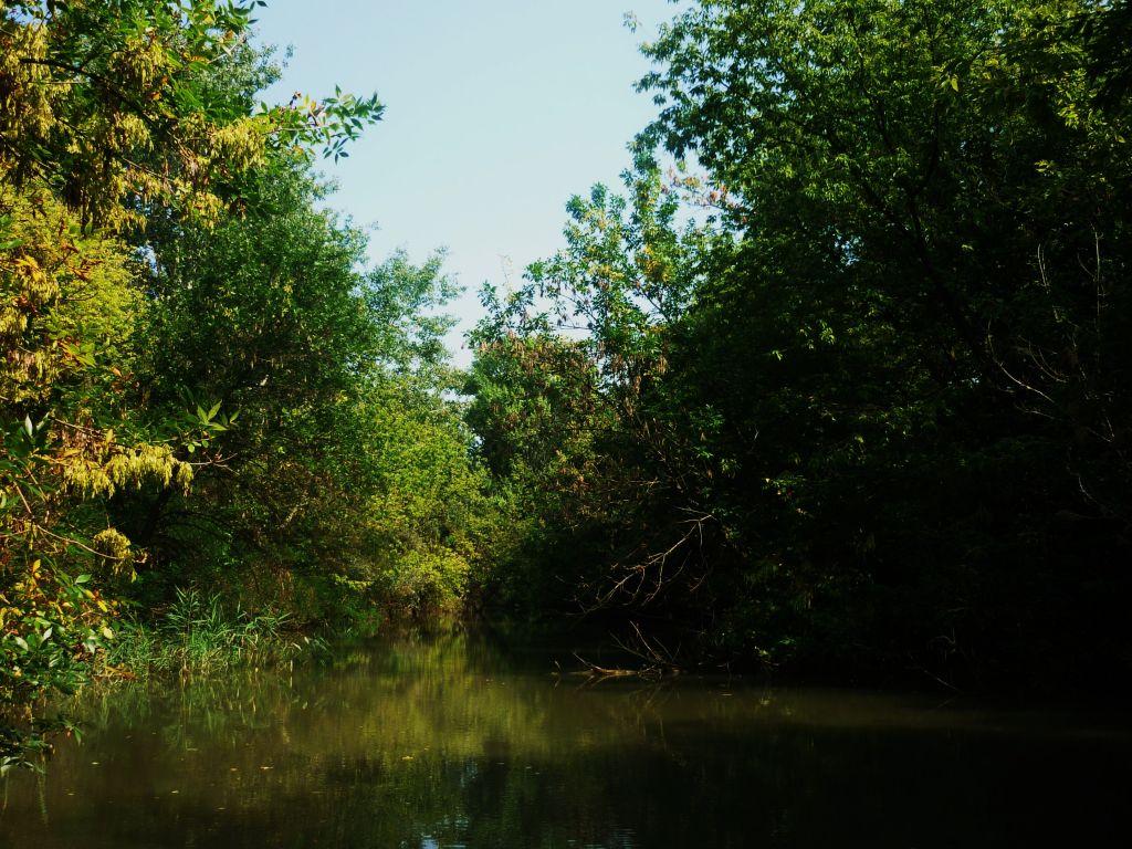bootje varen op de Kís-Tisza