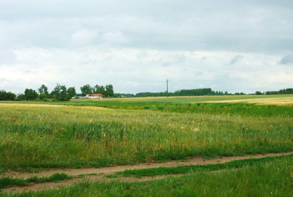rand van het dorp Tiszaszentimre